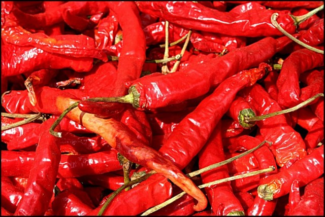 Mouth-numbing chillies...the condiment of choice!
