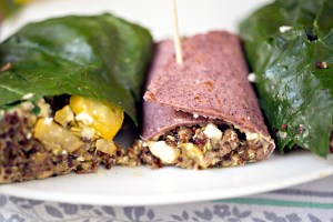 venison quinoa recipes