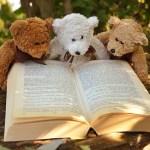 Peluches en la biblioteca para que los niños lean – Laura Tejerina