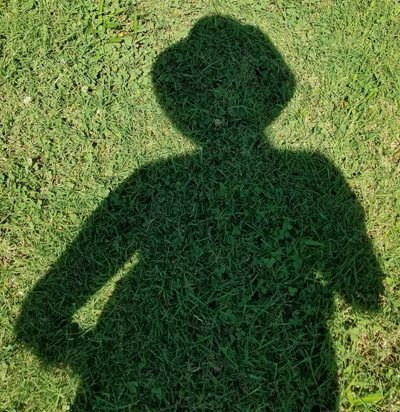 silhouette shadow on grass