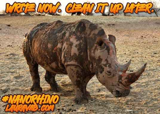 Muddy rhino. Write now, clean it up later.