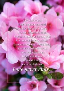 1 Corinthians 13:4-8a
