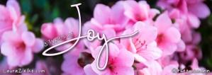 3 Types of Joy