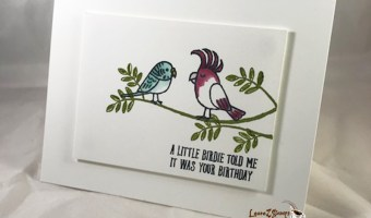 Bird Banter Birthday