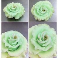 Cake design : Tada = Rose en sucre !