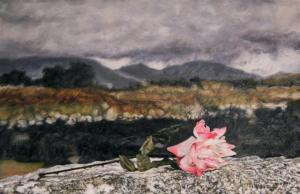 a-Marchand-Last-Rose-2