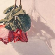 a-Marchand-Gathered-Roses-1