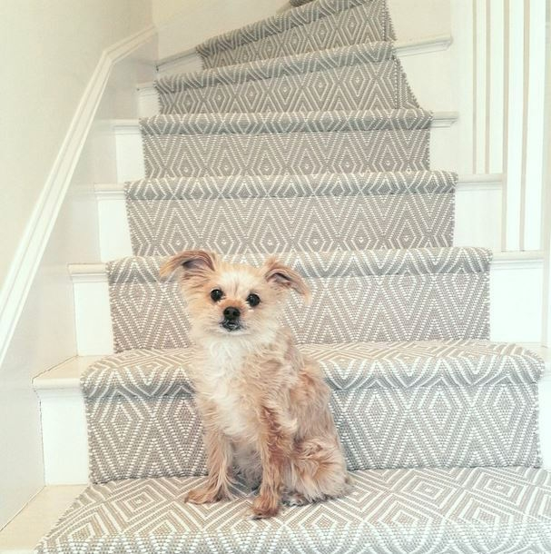 Stair Runners And The One Fiber You Should Never Use | Stair Runners With Borders | Beige | Unique | Wallpaper | Forest Green | Elegant