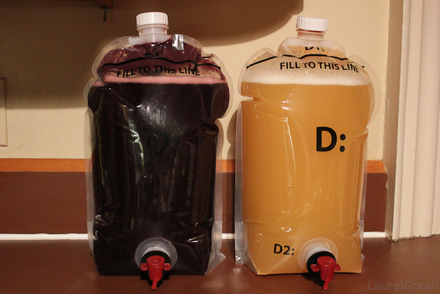 a photo of bags or red wine and white wine fermenting