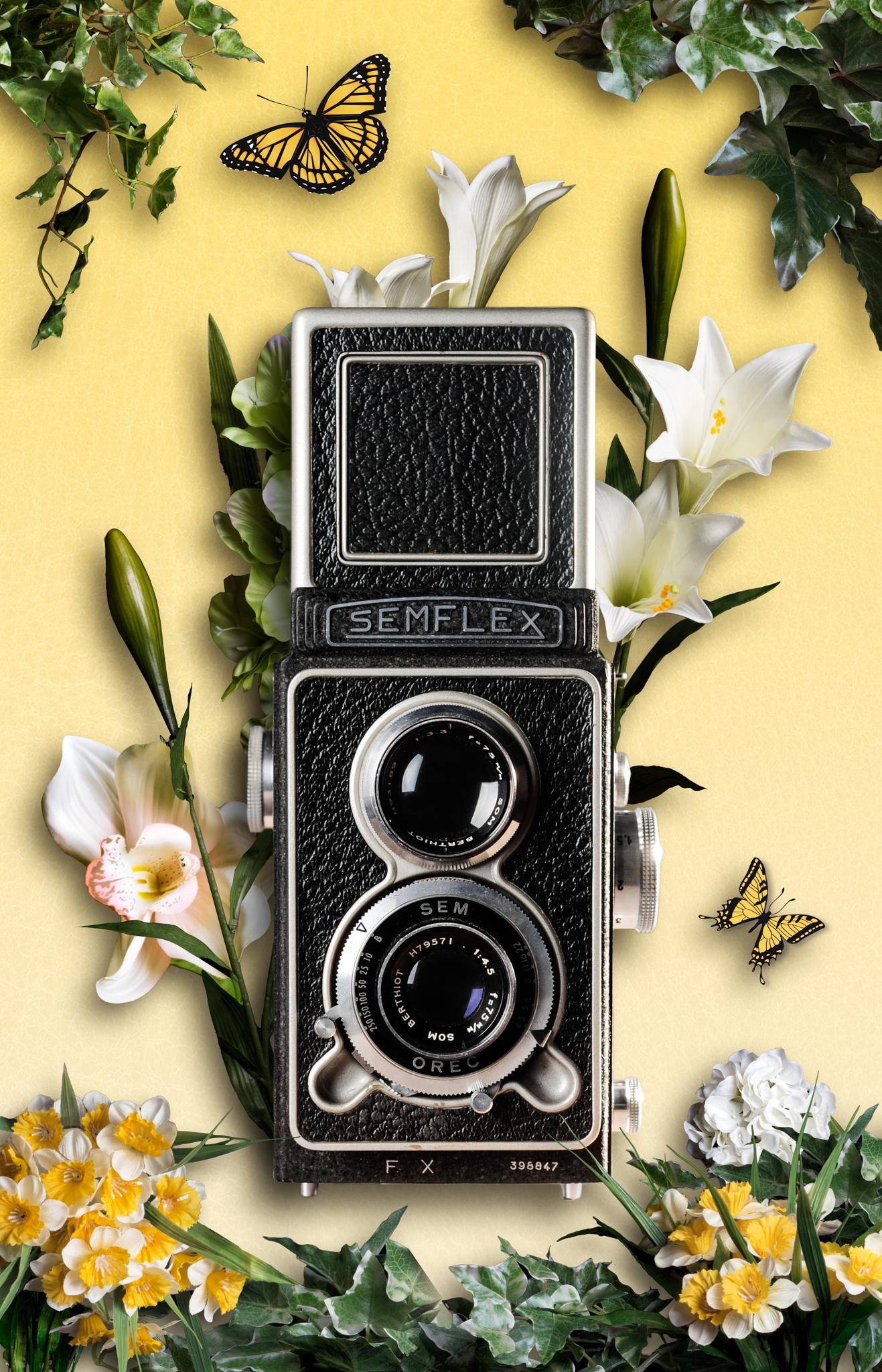 Icone bi-objectif semflex par Lauréline Reynaud