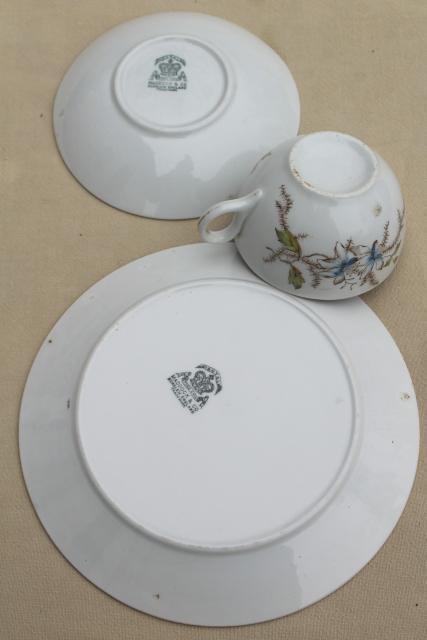 Antique 1800s English Ironstone China Transferware Dishes