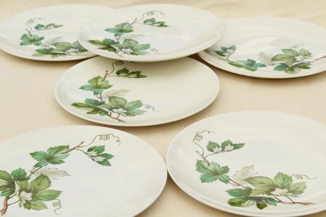 & Pottery Barn Sausalito Plates