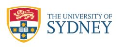 Facebook twitter blogs course Sydney University with Laurel Papworth