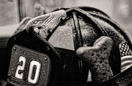 Dog Bone in Helmet