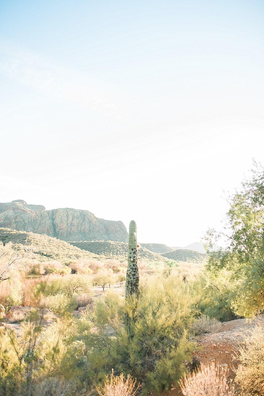 Salt River Engagement Session, Arizona Weddings, Arizona Desert Engagement Session, Desert Engagements, Sunset Portraits in Arizona, AZWed, Phoenix Wedding Photographer