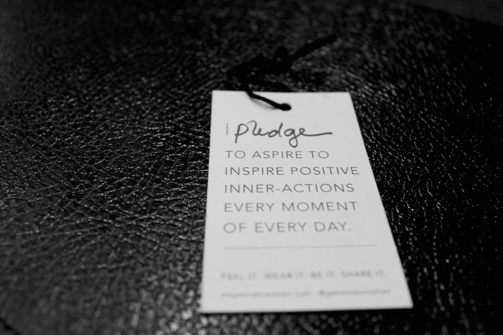 divalicious-mind-in-motion-2-pledge