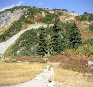 Trail to Stehekin from Cascade Pass