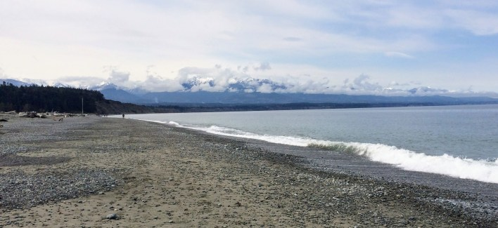 Olympic Mountains from Dungeness Spit