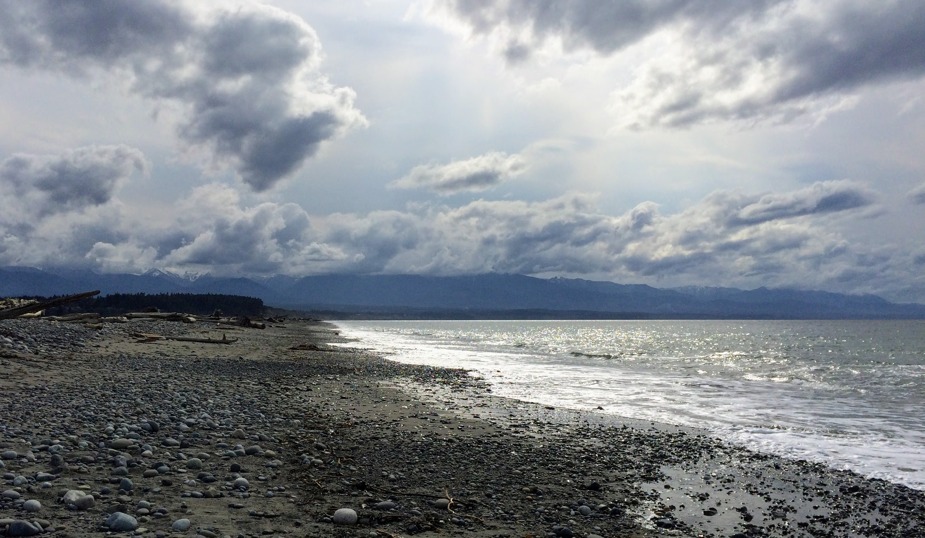 Dungeness Spit (Lauren Danner photo)