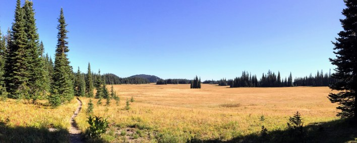 Aptly named Grand Park. Most of the flowers are gone, but the changing season washes the meadow gold.