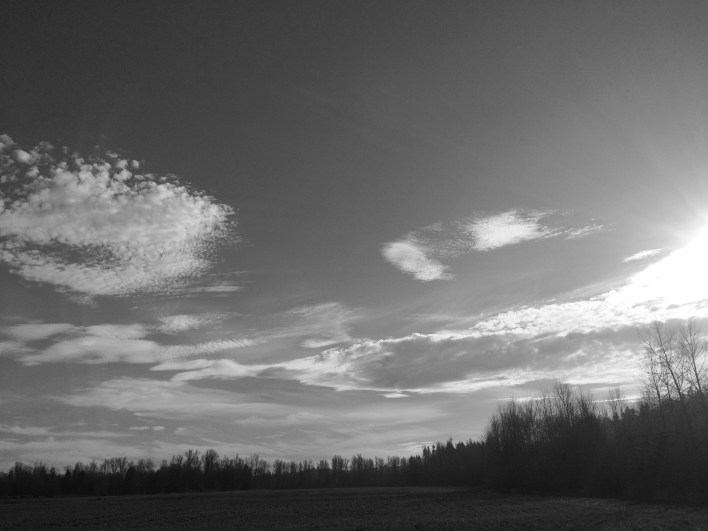 So much going on in the sky on this springlike day!