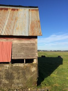 This old barn marks the start of the trail.