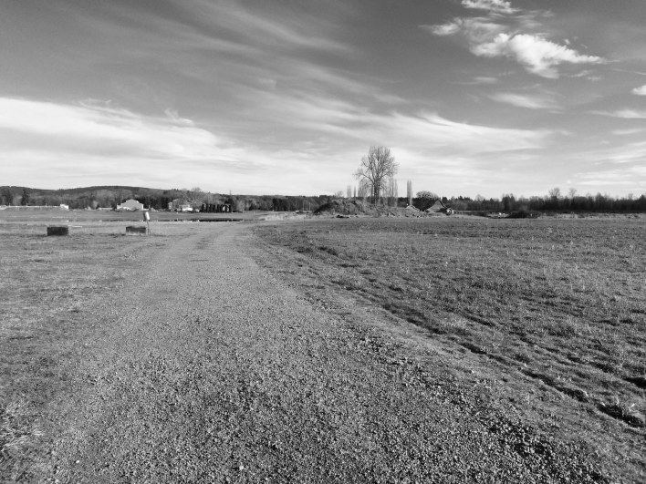 Mr. Adventure said the landscape looked like a Dorothea Lange photograph through the black-and-white viewfinder.