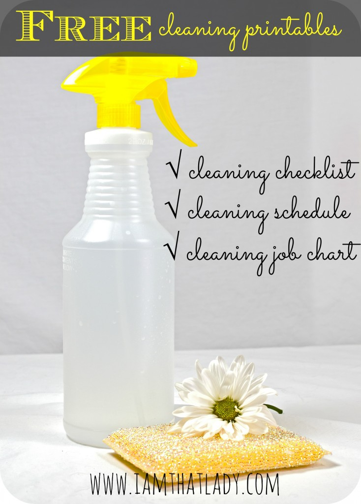 Are you having a hard time keeping your house clean? Here is a pack of FREE cleaning printables including a cleaning checklist, schedule, and job chart.