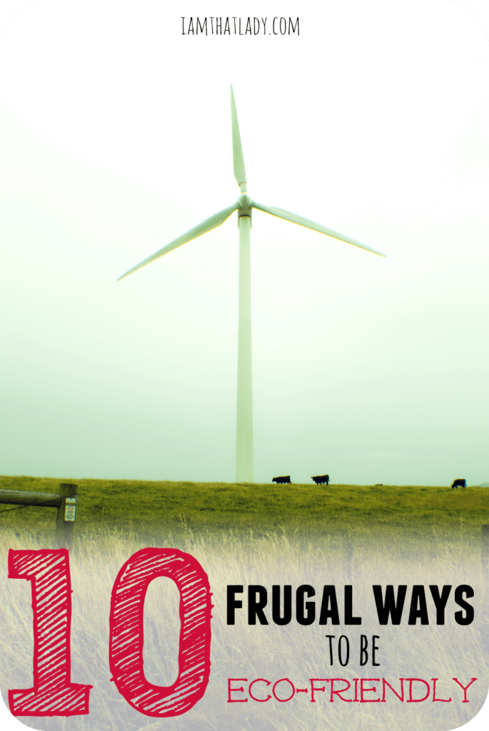 Just because you are frugal doesn't mean you can't also be eco-friendly. Here are 10 frugal ways to save money and still be eco-friendly! #BringingInnovation #
