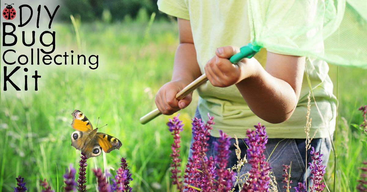 DIY bug collecting kit