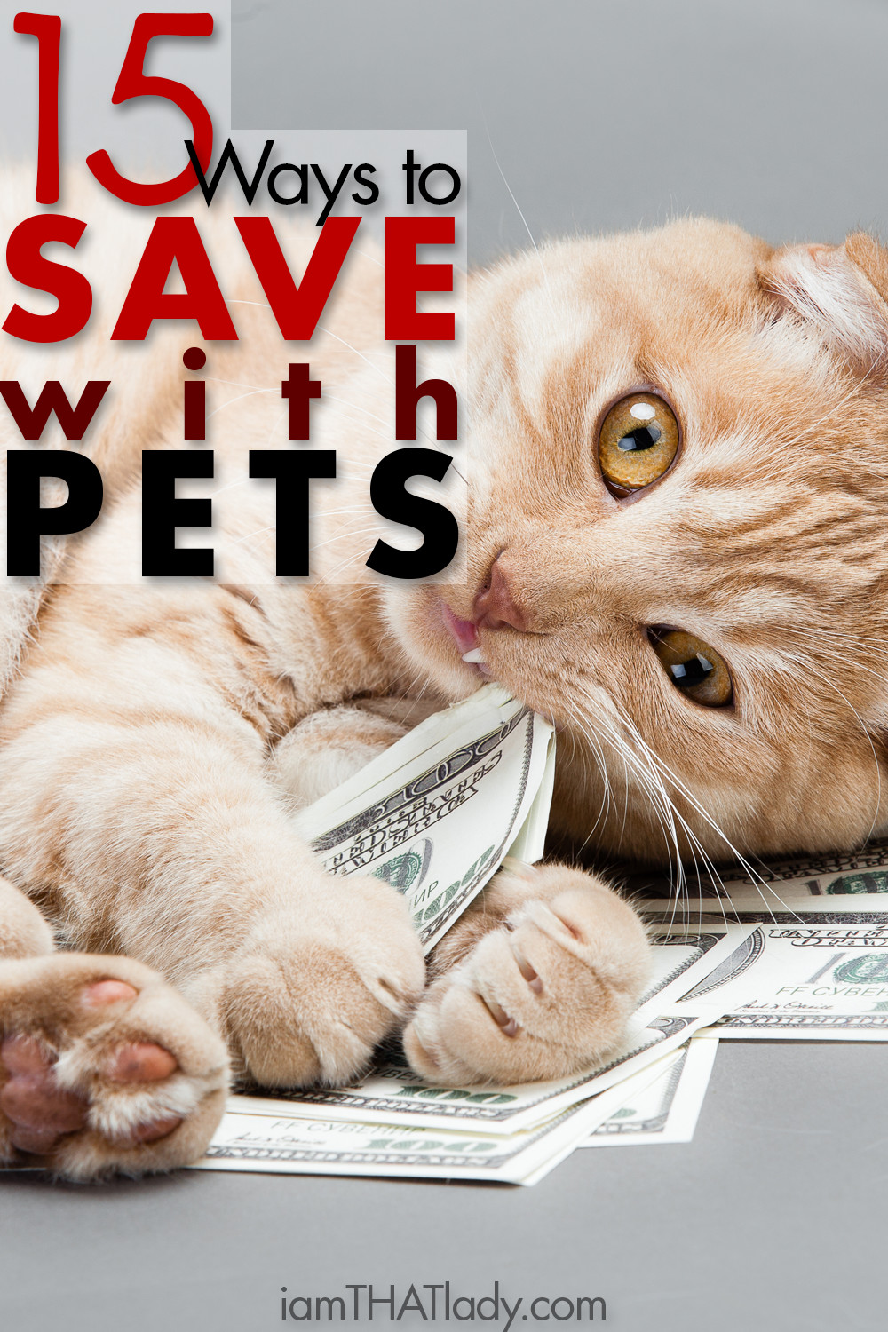 Save money on pets