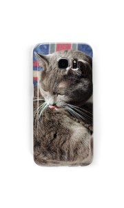 gray cat washing itself with tongue out on a cell phone case