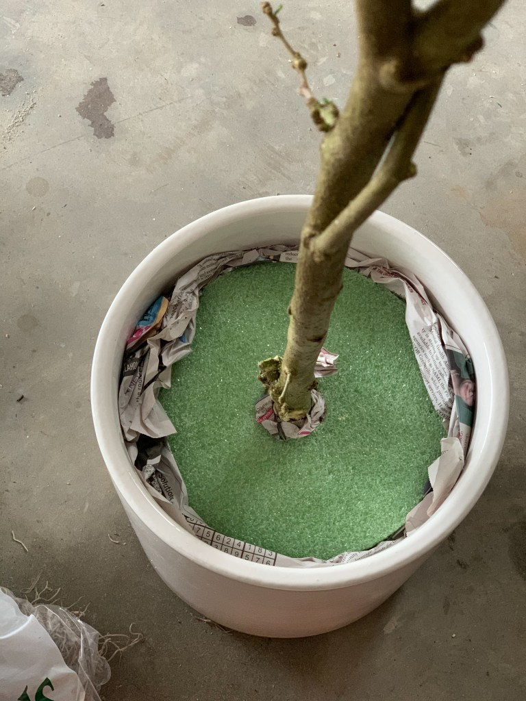 how to diy a faux olive tree