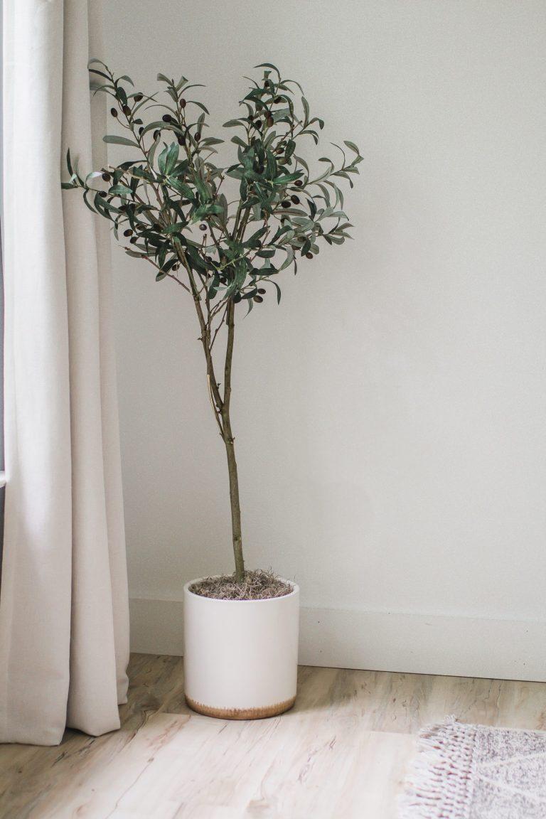 One Room Challenge Week 3: DIY Faux Olive Tree