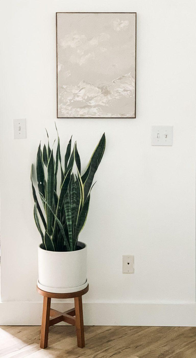DIY Joint Compound + Paint Sample Canvas Art