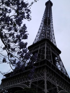 Ahh... the Eiffel Tower- so pretty!