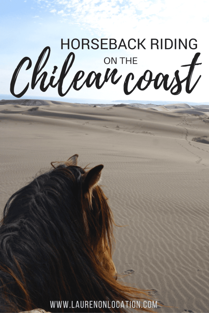 The perfect day horseback riding along the Chilean coast and Concón dunes.
