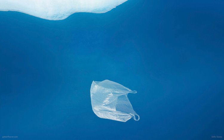 A white plastic bag floats in a blue sea.
