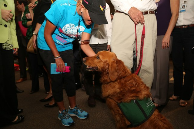Therapy Animals Help Abuse Victims With Confidence, Trust and Recovery