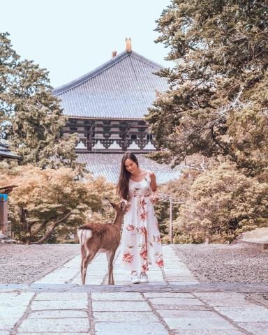 Nara, Japan Day Trip Guide