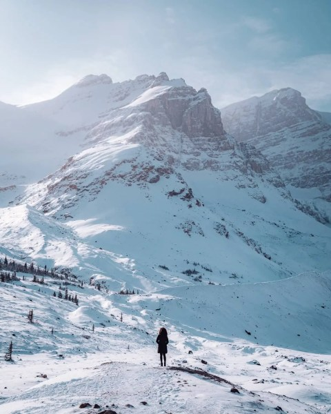 Columbia Icefields winter snowy mountains