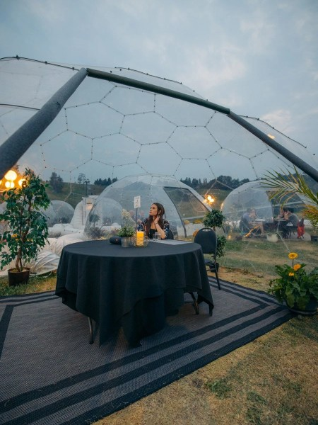 Geoscape Events Geodome Dinner Snow Valley