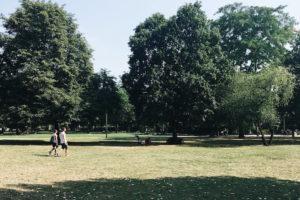 berlin park image