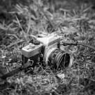Nadeige_MG_4884