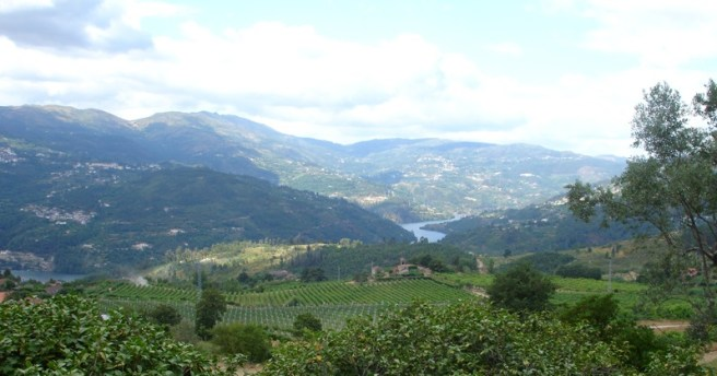 Many Vinho Verde vineyards overlook one of the region's rivers. (Photo courtesy of the Comissão de Viticultura  da Região dos Vinhos Verdes)