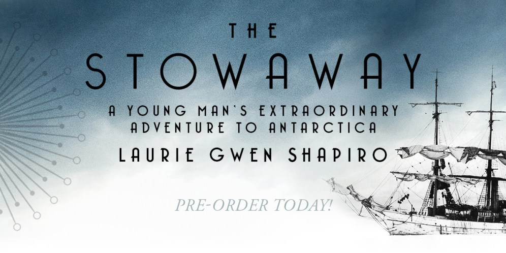 Book cover for The Stowaway by Laurie Gwen Shapiro
