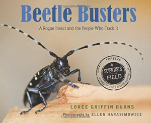 Beetle Busters cover