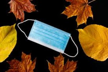autumn leaves surrounding a surgical mask