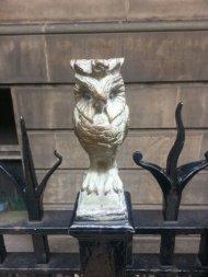 Owls outside Leeds library