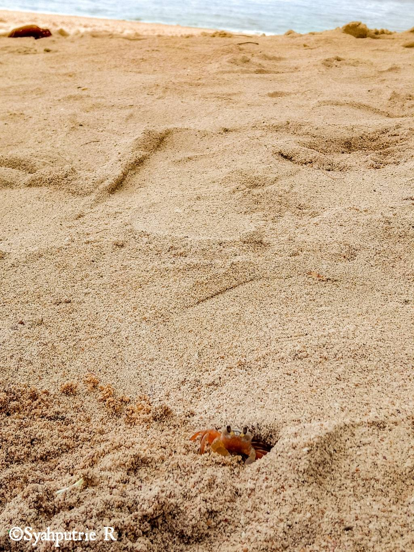 Pantai Wedi ombo Jogjaaa.jpg